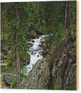 The River Below Hidden Falls Wood Print