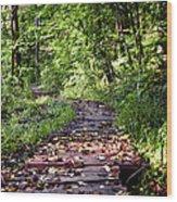 The Road Less Traveled Wood Print