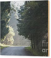The Road Out Of The Conservation Area Wood Print