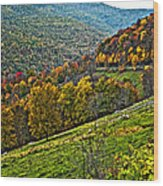 The Road To Glady Wv Painted Wood Print