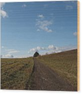 The Road To Nowhere Wood Print