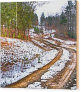 The Road To Spring Wood Print
