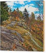 The Rocks Above Eagle Bay Wood Print