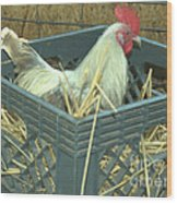 The Rooster That Laid A Golden Egg Wood Print