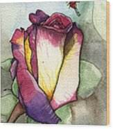 The Rose Wood Print by Nora Blansett