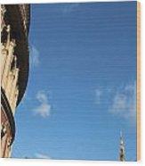 The Royal Albert Hall And Albert Memorial Wood Print