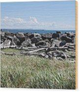 The Rugged Coast Wood Print