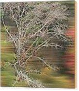 The Running Tree Wood Print
