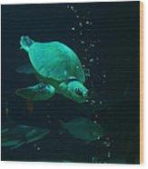 The Sea Turtle Dives Wood Print