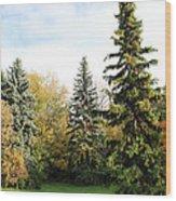 The Season Wood Print