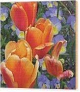 The Secret Life Of Tulips - 2 Wood Print