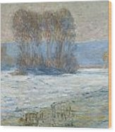 The Seine At Bennecourt Wood Print