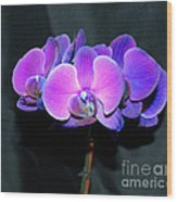 The Shade Of Orchids Wood Print