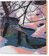 The Shades Of Winter Wood Print
