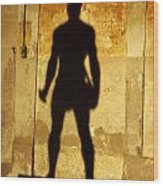 The Shadow Of The Statue Wood Print