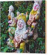 The Singing Gnomes Wood Print