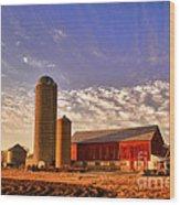 The Skittles Barn Wood Print