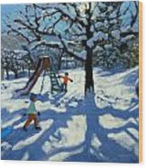 The Slide In Winter Wood Print by Andrew Macara