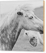 The Smiling Horse Wood Print