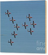 The Snowbirds Wood Print
