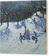 The Snowman  Wood Print by Andrew Macara