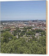 The Southern City Of Birmingham Alabama Wood Print