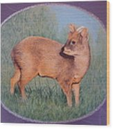The Southern Pudu Wood Print