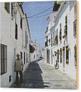 The Spanish Village Mijas Wood Print