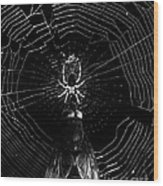 The Spider And The Fly . Black And White Wood Print