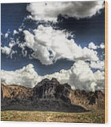 The Splendor Of The Superstitions Wood Print