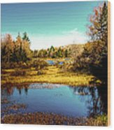The Still Of Autumn In The Adirondacks Wood Print