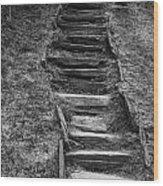 The Stone Staircase  Wood Print