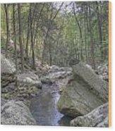 The Stream Wood Print