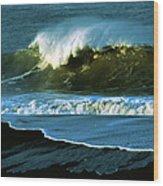 The Surf Motel Wood Print