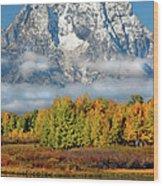 The Tetons In Autumn Wood Print