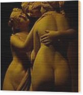 The Three Graces Voyeur  Wood Print