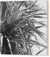 The Tourist Pineapple Black And White Wood Print