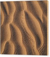 The Trail Behind Wood Print