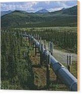 The Trans-alaska Pipeline Runs Wood Print
