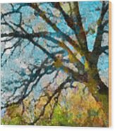 The Tree Of Many Colours  Wood Print