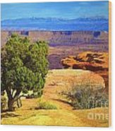 The Tree The Canyon And The Mountains Wood Print