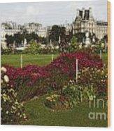 The Tuilleries Garden In Paris Wood Print