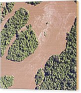 The Turbid Ituri River Channels Its Way Wood Print