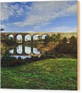 The Viaduct Wood Print