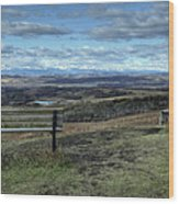 The View Point Wood Print