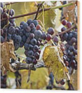 The Vineyard Wood Print by Linda Mishler
