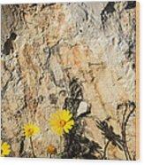 The Wall Wood Print