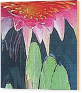 The Water Lily Unleashed Wood Print