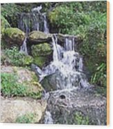 The Waters Shall Spring Forth From The Ground Vi Wood Print