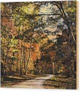 The Way Home Wood Print